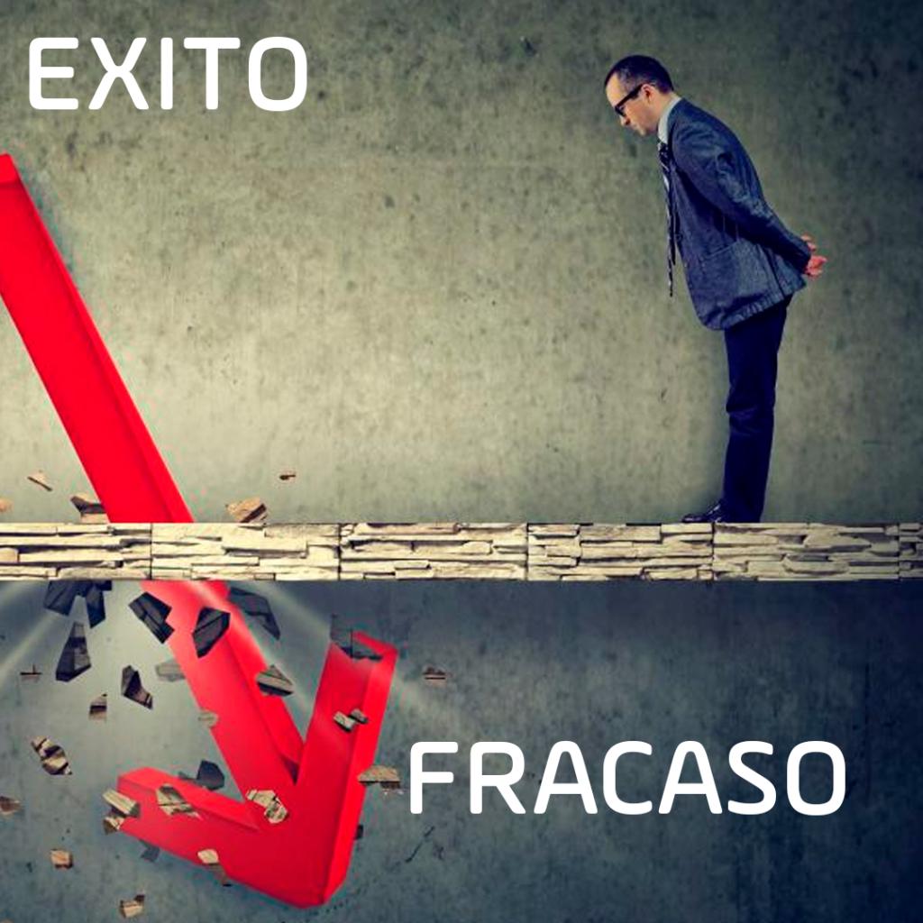 ¿Por qué las empresas fracasan o se estancan ?